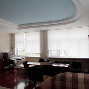 Рулонные шторы в кабинет.