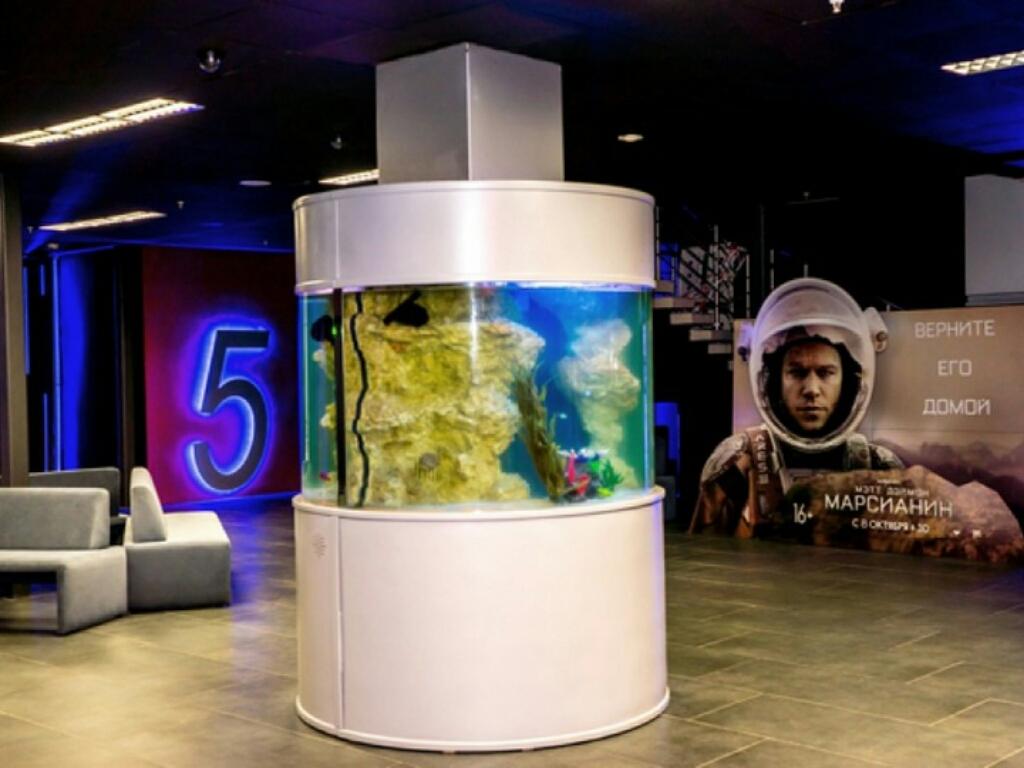 Планета kино - сеть современных кинотеатров с двумя, тремя и шестью кинозалами