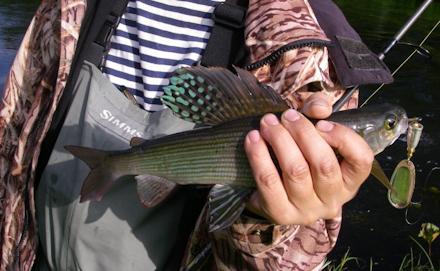 Фото: fishtravel.org