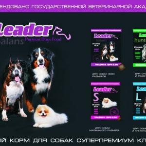 Сухой корм для собак Лидер в Воронеже!