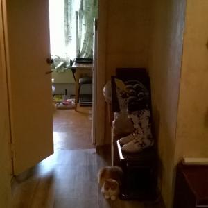 Шикарный, толстый, утеплённый, красивый линолеум в коридор!!!