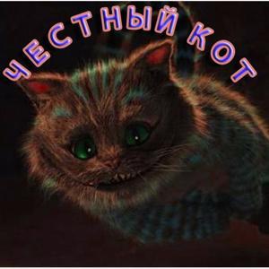 Картинки честный кот