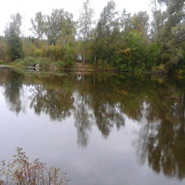 Ульяновская областная больница электронная запись