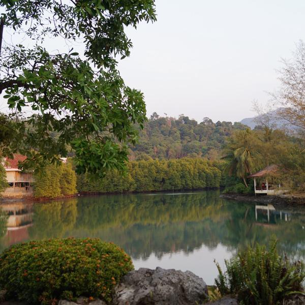 Вид из номера в Klong Prao Resort