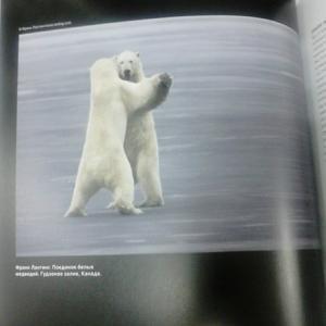 Фотка из книги)