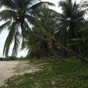 Лучше пальмы гнуть, чем кто то тебя!