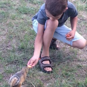 Сын Демид кормит суслика морковкой