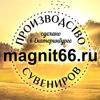 Магнит66