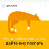Кот_обормот