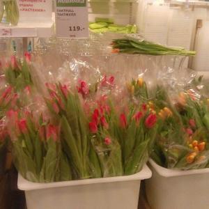 праздничные тюльпаны в Икеа