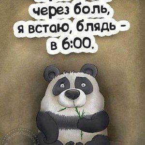 Елена 16.04
