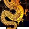 Золотой Дракон, ресторан доставки японских блюд