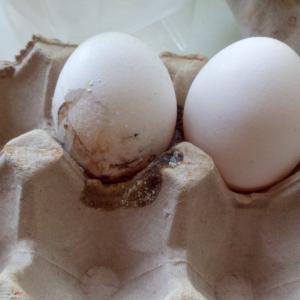 Вот такое яйцо попалось при покупки Яйцо Кировское, в данном магазине.