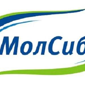 МолСиб, ООО