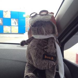 Мой пассажир из Роса, готовый к скорости и полетам:))