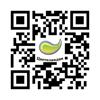 Цветоландия-лагерь с доступной средой