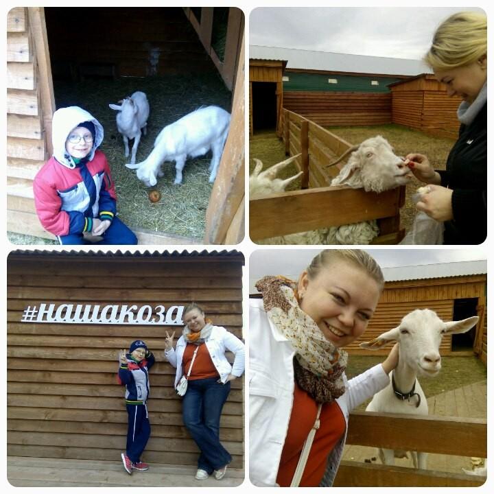 строении коза дереза красноярск база работы швейной