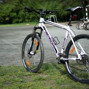 Именно такие велосипеды выдают. Отличное качество!
