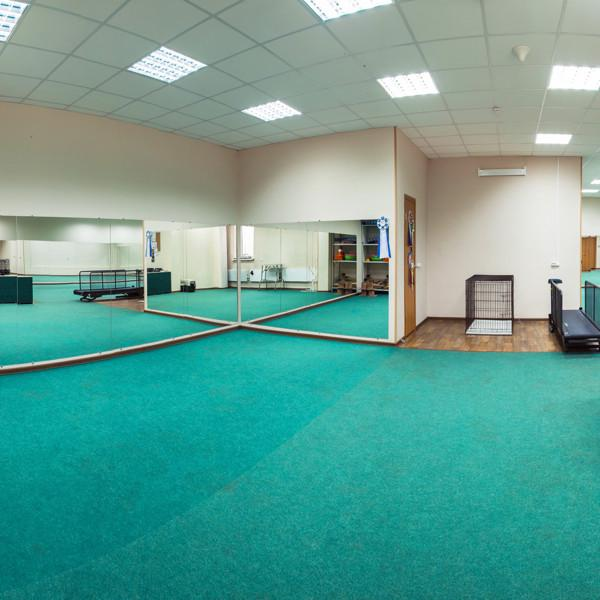 Малый зал для шоу-тренинга