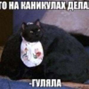 ГУЛЯШ