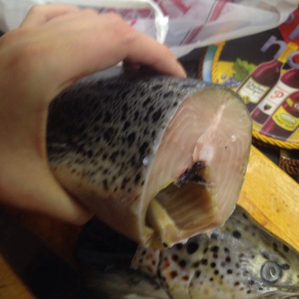 Как вернуть деньги если рыба оказалась не свежей