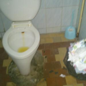 Туалет для посетителей, в Женской консультации на пер.Северном,2