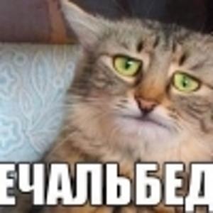 Илья Карелин