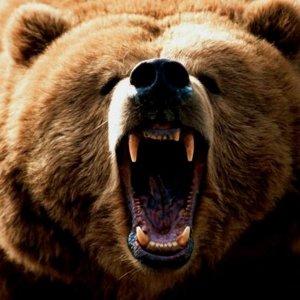 Ярослав Медведь